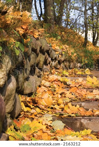 Stairs in autumnal park covered with maple leaves. - stock photo