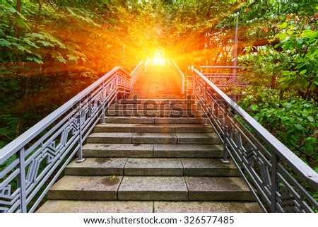 stairway in green park  to sunset - stock photo