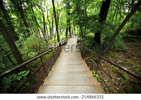 Stairway in Park with many trees - stock photo