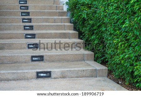 Stairways with the garden - stock photo