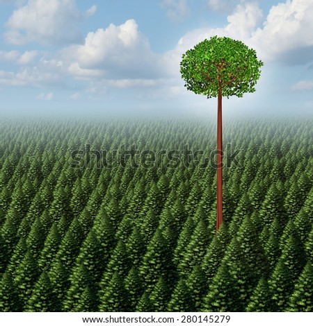 Stand out from the crowd concept as a forest of evergreen trees with a successful leaf tree standing high above the competition as a business metaphor for individuality and different individual. - stock photo