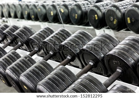 Stand with dumbbells. Sports and fitness room. Weight Training Equipment