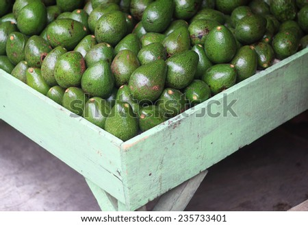 Stand with many avocados for sale at the market - stock photo