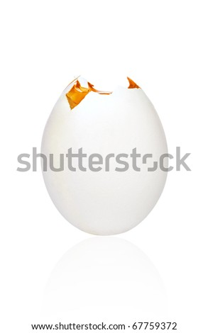 Standing broken egg isolated on white with clipping path - stock photo