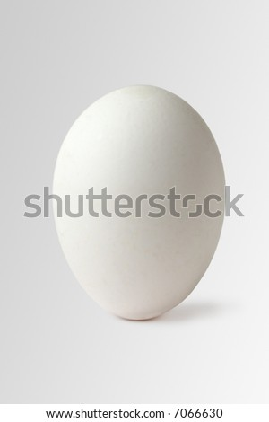 Standing egg isolated on white
