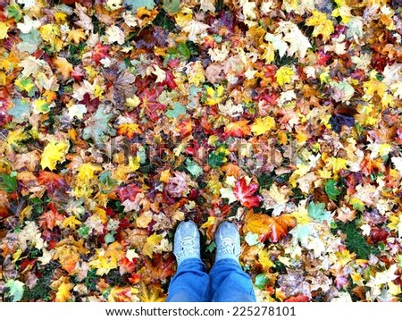 Standing in a field of colorful leaves in fall - stock photo