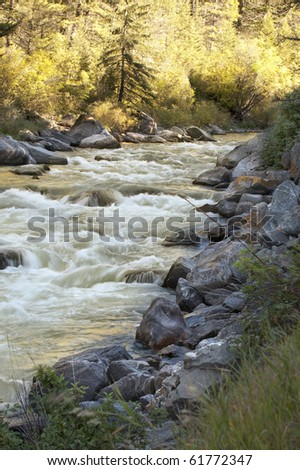 Standing on the banks of Gallatin River, Montana - stock photo