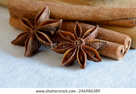 Star Anise and Cinnamon Sticks on the Wooden Board - stock photo