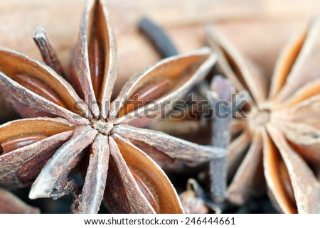 Star anise, cloves and cinnamon detail closeup - stock photo