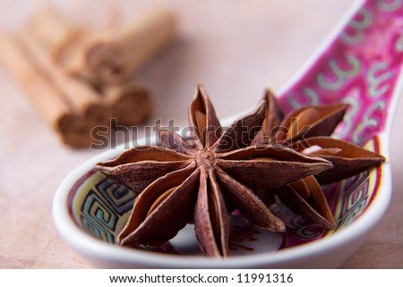 Star anise on an Asian spoon with cinnamon sticks in the background.