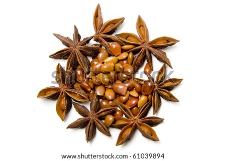 star anise, seeds and pods on a white background - stock photo