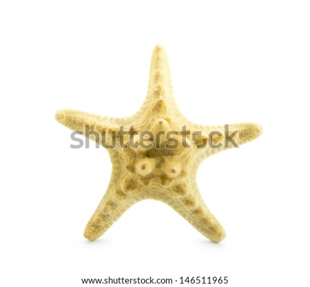 star fish isolated on white background - stock photo