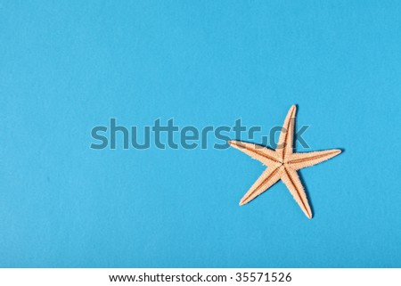star fish on blue background - stock photo