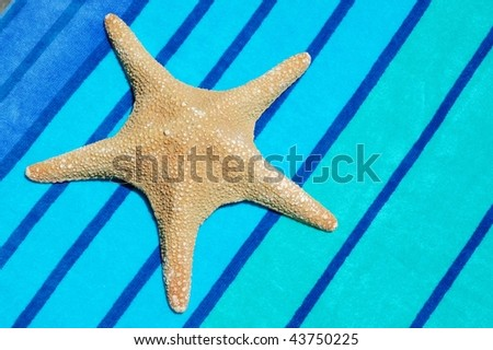 star fish on pretty striped beach towel
