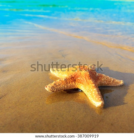 Star Sand Beach  - stock photo