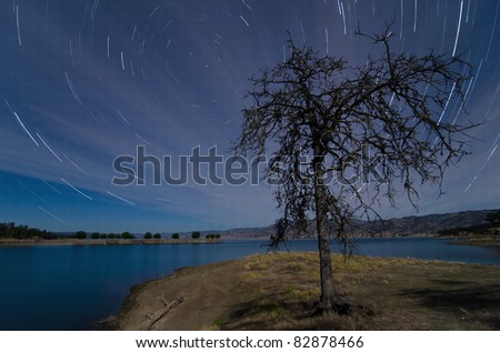 Star Trails with lonely tree during full moon at Lake Berryessa, California - stock photo
