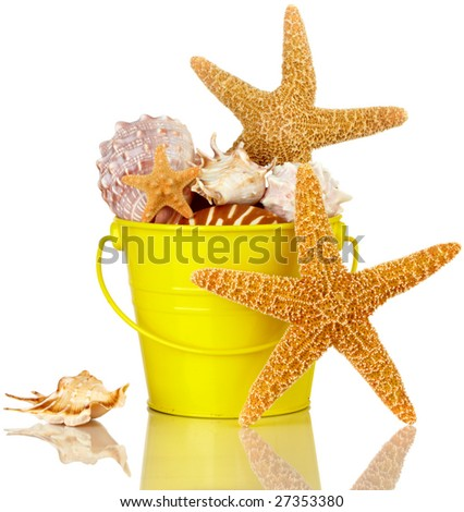 Starfish And Sea Shells In Colorful Yellow Beach Bucket Isolated On White - stock photo
