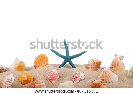 Starfish and seashells on the beach, isolated on white background