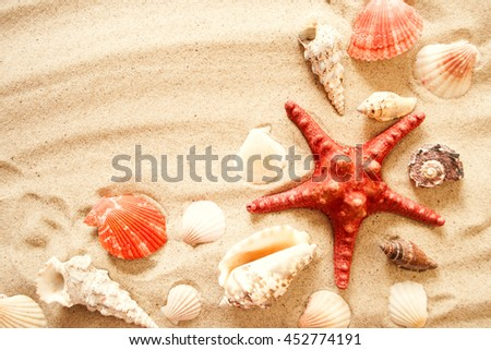 Starfish and shells on a sand beach - stock photo