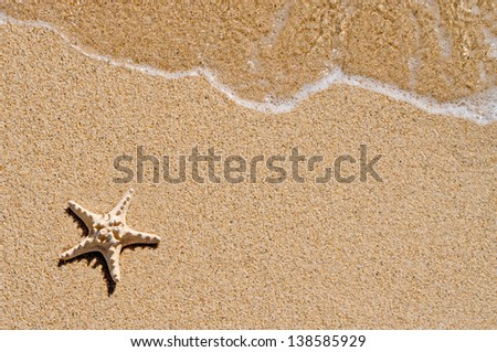 Starfish and wave on the sandy beach with copy-space on the sand - stock photo