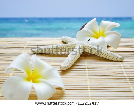 starfish and white flower and the sea