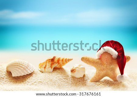 Starfish in Santa Claus hat and seashells on a summer beach. Merry Christmas. - stock photo