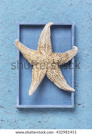 Starfish in the blue box on handmade paper