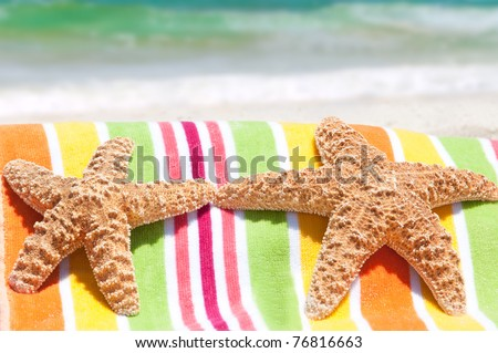 starfish lounging at seashore - stock photo