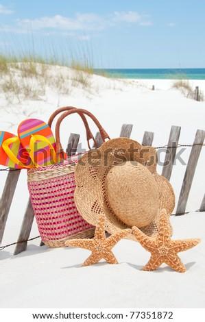 starfish lounging at seashore - stock photo
