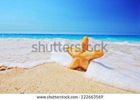 Starfish on a beach with clear sky and wave, Greece - stock photo
