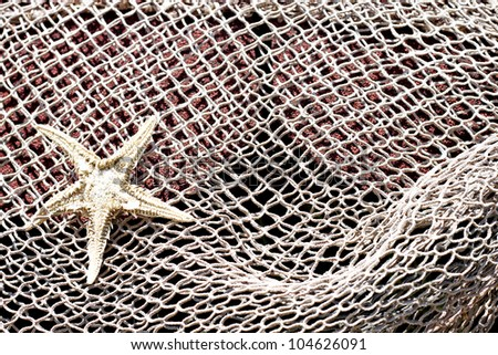 Starfish on a fisher's net - stock photo