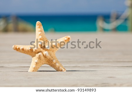 Starfish on a wooden path leading to the beach. Formentera island. Spain. - stock photo