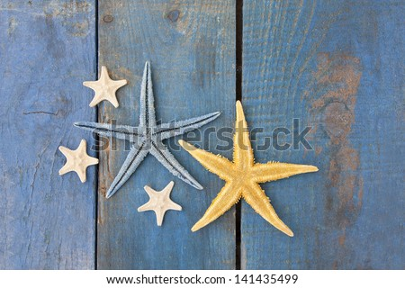 starfish on blue wooden