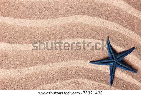 Starfish on sand - stock photo