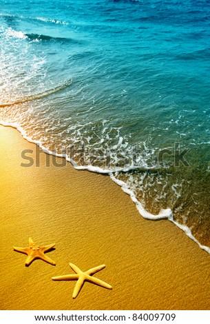 starfish on sand and wave - stock photo