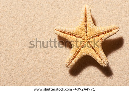 Starfish on sand. Summer beach background. View from above - stock photo