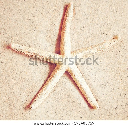 Starfish on sand with retro instagram filter effect - stock photo