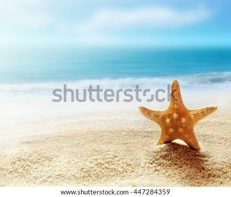 Starfish on the beach and ocean as  background. Summer beach. - stock photo