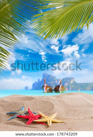 Starfish on the beach in Phi Phi islands Thailand - stock photo