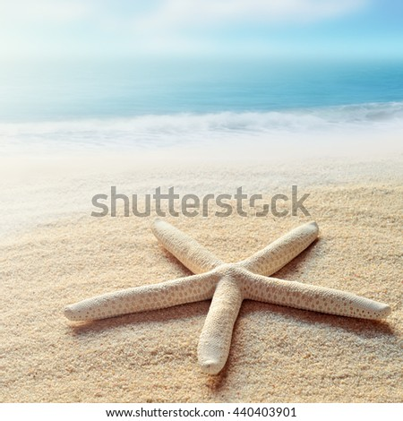 Starfish on the Summer beach. Sand and ocean as background. Summer concept. Tropical beach. - stock photo