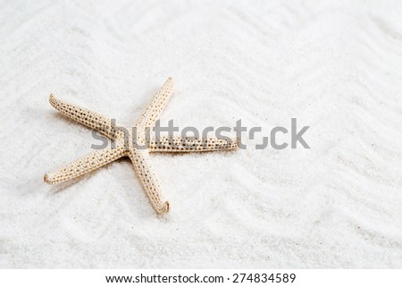 starfish on the white sand - copy space - stock photo