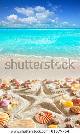 starfish printed in white sand and shells from a tropical blue water beach [Photo Illustration] - stock photo
