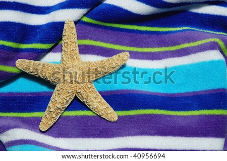 starfish /sea star on beach towel room for your text