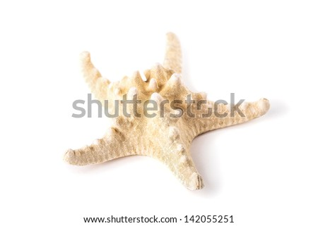 Starfish seashell isolated on white - stock photo