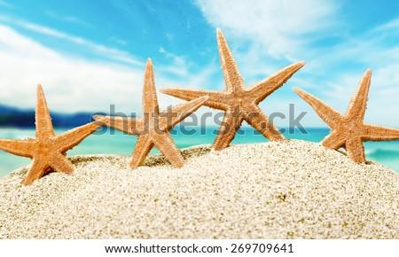 Starfish. Starfish  with ocean , beach and seascape, shallow dof - stock photo