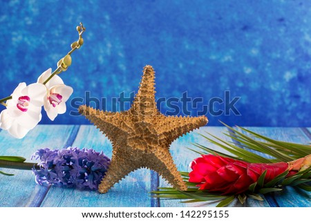 starfish with hyacinth flower and white orchid on blue wood  background - stock photo