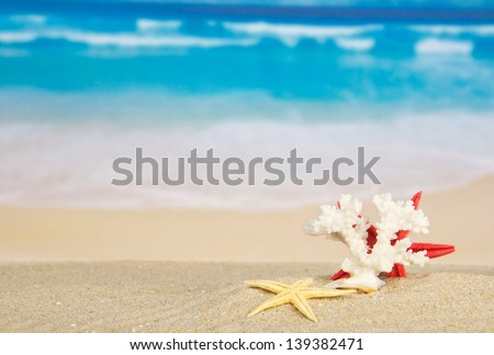 Starfishes and coral on sand against the sea - stock photo