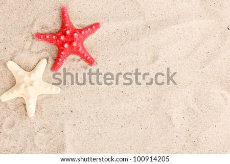 Starfishes on sand - stock photo