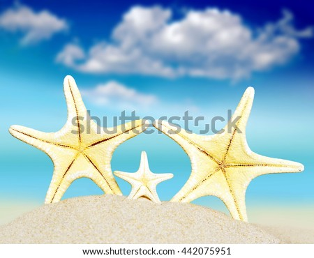 Starfishes on the summer sandy beach. Sky and sea as background. Summer beach.  - stock photo