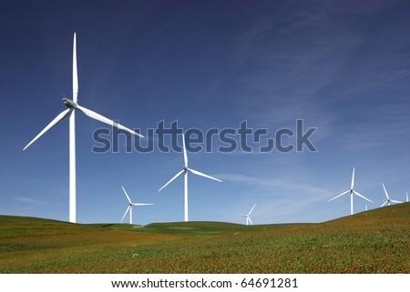 Stark white power generating wind turbines behind flowered green pasture and blue skies. - stock photo